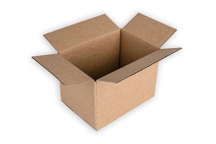 Regular Shipping Carton