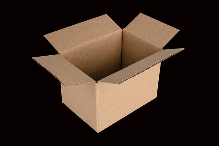 Regular Shipping Carton